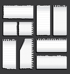 torn notebook vector image vector image
