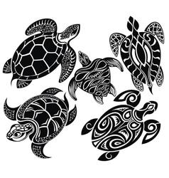 Turtles vector image