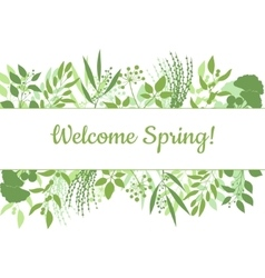 Welcome spring green card design text in floral vector image vector image
