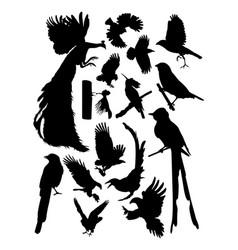 birds silhouette vector image