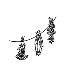 Dried herbs ornament flat style vector