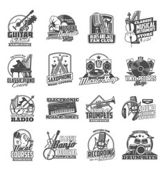 Musical instruments and equipment icons vector