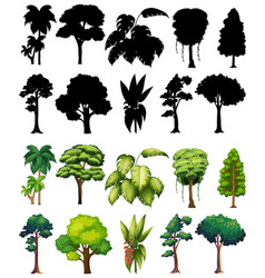 Set plant and tree with its silhouette vector
