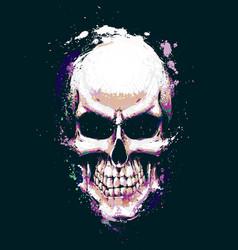 skull artistic splatter purple n green vector image