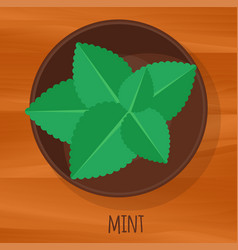 mint flat design icon vector image vector image