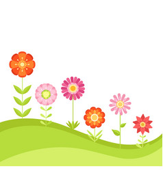 summer floral background with garden vector image vector image