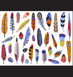colorful bird feather set in flat design vector image