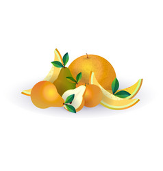 pear melon fruit on white background healthy vector image