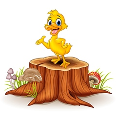 Cartoon funny duck presenting on tree stump vector image vector image