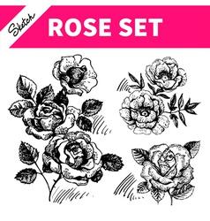 Sketch floral set vector image