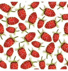 strawberry wild pattern vector image vector image