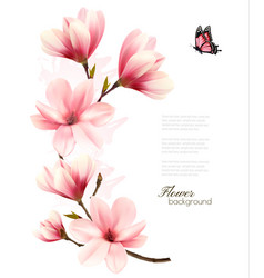 beautiful pink magnolia background vector image vector image