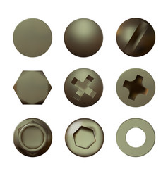 a set metal brass screws and bolt vector image