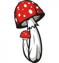 Agaric mushrooms vector