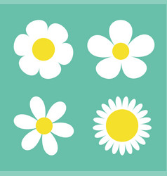 camomile set four white daisy chamomile icon cute vector image