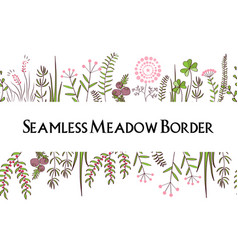 Meadow herbs seamless borders background vector