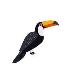 summer bird vector image