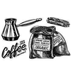 Bag coffee beans in vintage style hand drawn vector