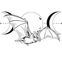 Bat4 vector image