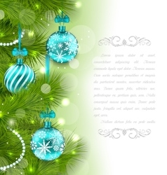 Christmas Glowing Card with Fir Twigs vector image