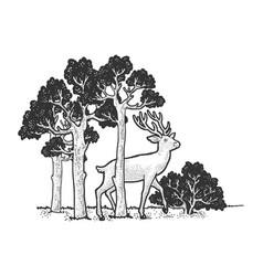 Deer in forest sketch vector