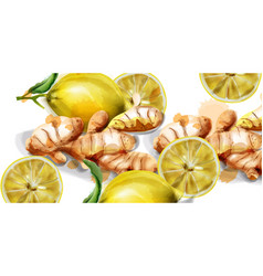 lemon and ginger watercolor background vector image