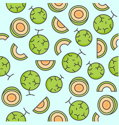 Melon or cantaloupe seamless pattern for vector