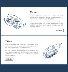 Mussels posters set meals vector
