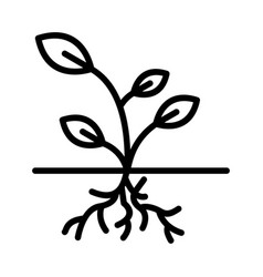 Root icon vector