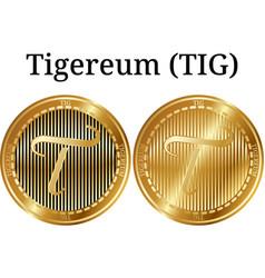 Set of physical golden coin tigereum tig vector