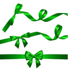 Set of realistic green bow with long curled green vector