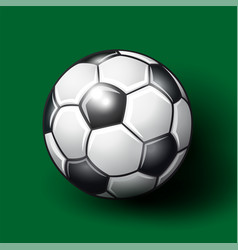 soccer ball on the green background vector image