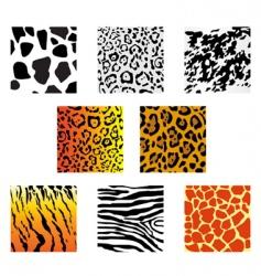 animal fur and skin vector image