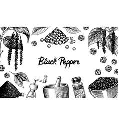 black pepper background in vintage style mortar vector image