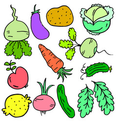 Doodle of vegetable various set collection vector