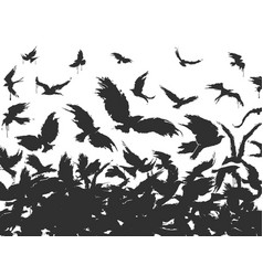 Flock of birds in black vector