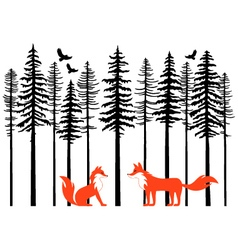 Foxes in forest vector image