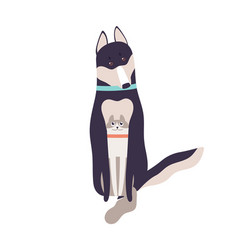 Friendly cat and dog hugging sitting together vector