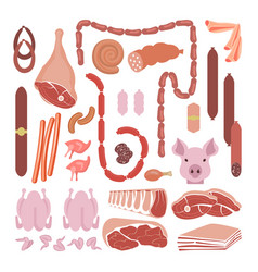meat and sausages collection vector image