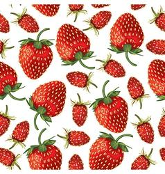 strawberries pattern vector image