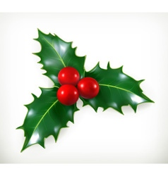 Holly traditional christmas decoration icon vector