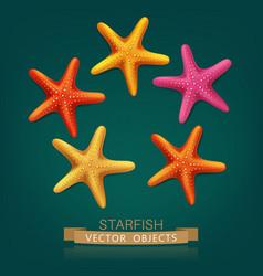 starfish isolated on dark green background vector image