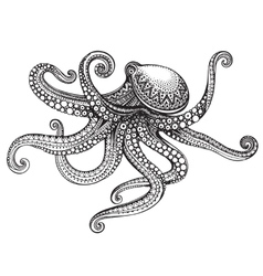Hand drawn octopus in graphic ornate style vector image vector image