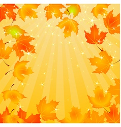 Falling autumn leaves background vector