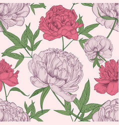 floral seamless pattern with beautiful peony vector image