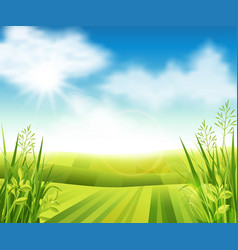 Green farm field vector