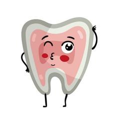 Human tooth cute cartoon character vector
