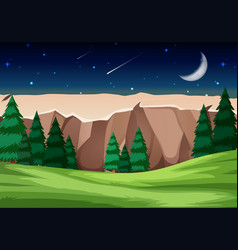 national park scene at night vector image