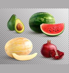 realistic fruits set vector image