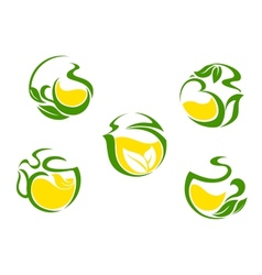 Tea symbols with lemon and green leaves vector